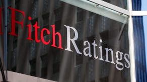 fitch 8
